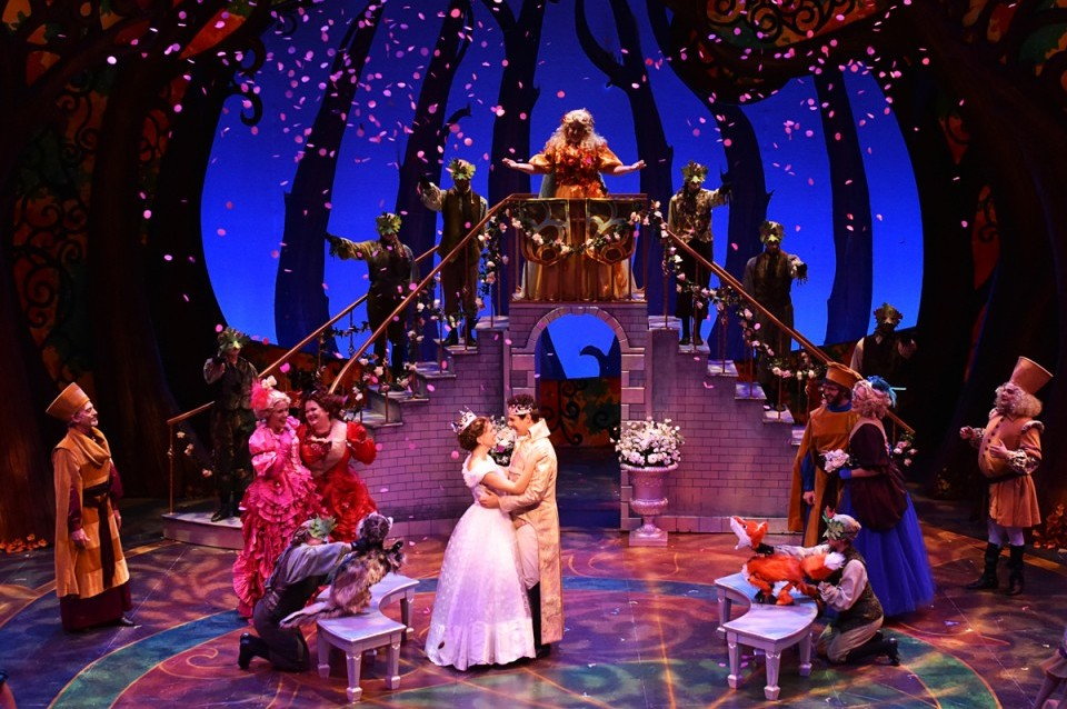 Rogers + Hammerstein's Cinderella Directed and Choreographed by Michael Jenkinson